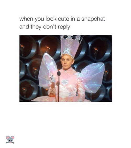 Snapchat: when you look cute in a snapchat  and they don't reply 🐭