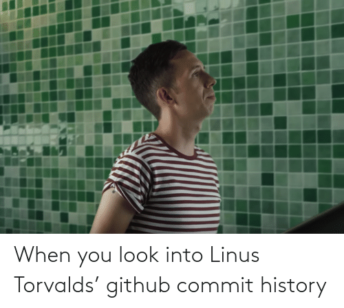 linus: When you look into Linus Torvalds' github commit history