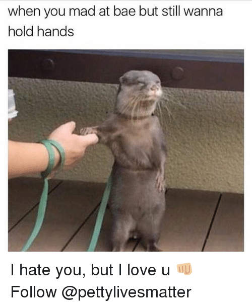 Bae, Love, and Memes: when you mad at bae but still wanna  hold hands I hate you, but I love u 👊🏼 Follow @pettylivesmatter