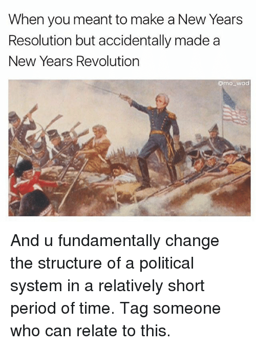 Fundamentalism: When you meant to make a New Years  Resolution but accidentally made a  New Years Revolution  @moo wad And u fundamentally change the structure of a political system in a relatively short period of time. Tag someone who can relate to this.