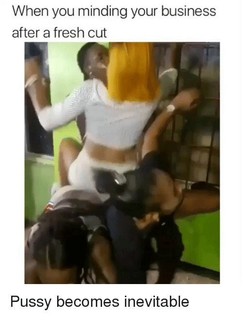 Fresh, Memes, and Pussy: When you minding your business  after a fresh cut Pussy becomes inevitable