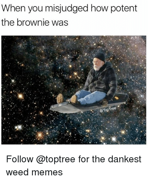 Memes, Weed, and Marijuana: When you misjudged how potent  the brownie was  Top Tree Follow @toptree for the dankest weed memes