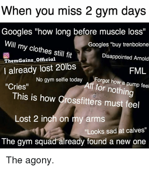 """FML: When you miss 2 gym days  Googles """"how long before muscle loss""""  Googles """"buy trenbolone  Disappointed Arnold  FML  Will my clothes still fit  回  ThemGainz Official  I already lost 20lbs  No gym selfie todayForgot how a p  Alf for nothing  """"Cries""""  This is how Crossfitters must feel  Lost 2 inch on my arms  Looks sad at calves""""  The gym squad already found a new one The agony."""