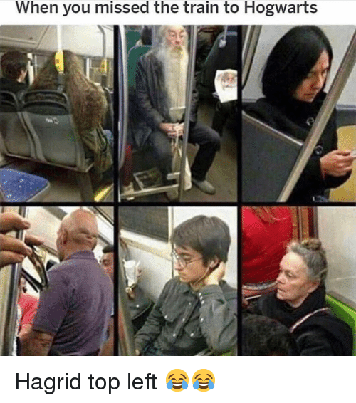 hagrid: When you missed the train to Hogwarts Hagrid top left 😂😂