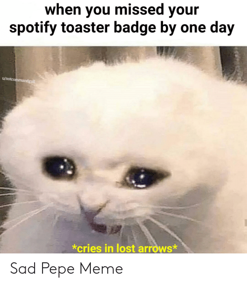 Pepe Meme: when you missed your  spotify toaster badge by one day  u/notcommandgull  *cries in lost arrows* Sad Pepe Meme