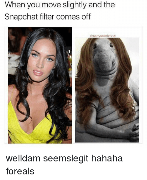 Memes, 🤖, and Filter: When you move slightly and the  Snapchat filter comes off  banterbus  bal welldam seemslegit hahaha foreals