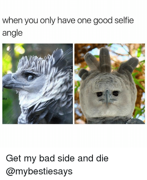 Bad, Selfie, and Good: when you only have one good selfie  angle  aka Get my bad side and die @mybestiesays