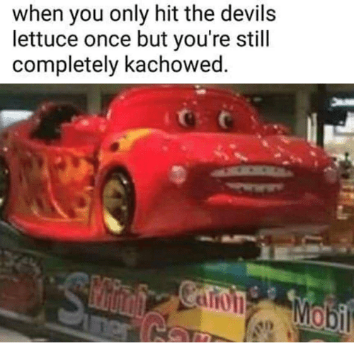 The Devils Lettuce: when you only hit the devils  lettuce once but you're still  completely kachowed