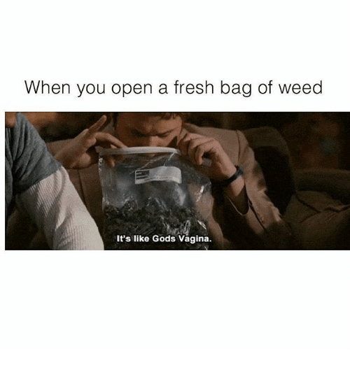 Fresh, Memes, and Weed: When you open a fresh bag of weed  It's like Gods Vagina.