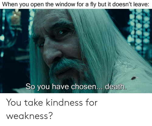 kindness for weakness: When you open the window for a fly but it doesn't leave:  So you have chosen... death You take kindness for weakness?