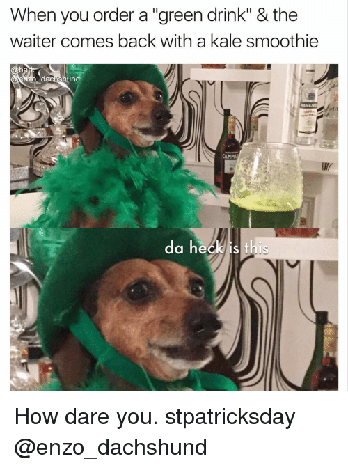 "Memes, 🤖, and Green: When you order a ""green drink"" & the  waiter comes back with a kale smoothie  un  RAMAnU  CAMPA  da heck is this How dare you. stpatricksday @enzo_dachshund"