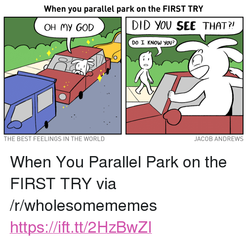 "Do I Know You: When you parallel park on the FIRST TRY  >.  DID YOU SEE THAT?  OH my GOD  DO I KNOW yoU?  THE BEST FEELINGS IN THE WORLD  JACOB ANDREWS <p>When You Parallel Park on the FIRST TRY via /r/wholesomememes <a href=""https://ift.tt/2HzBwZI"">https://ift.tt/2HzBwZI</a></p>"