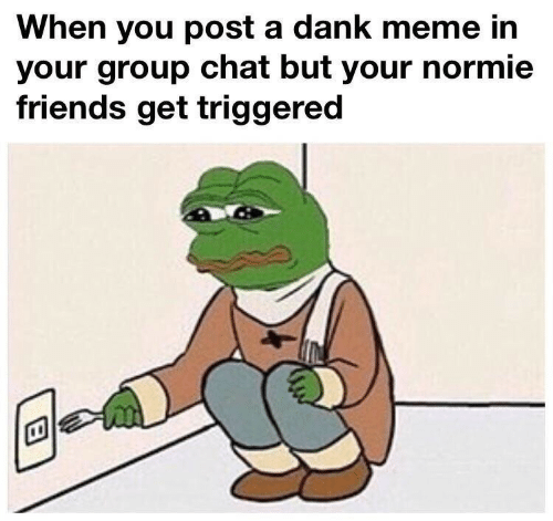 A Dank Meme: When you post a dank meme in  your group chat but your normie  friends get triggered