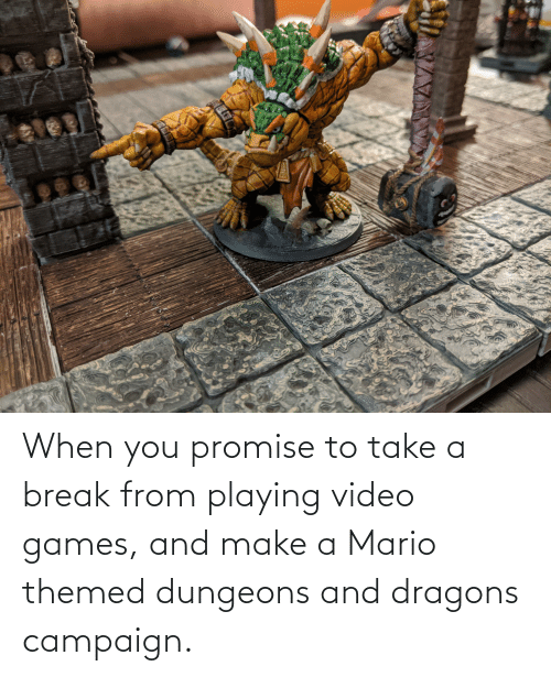 dungeons: When you promise to take a break from playing video games, and make a Mario themed dungeons and dragons campaign.