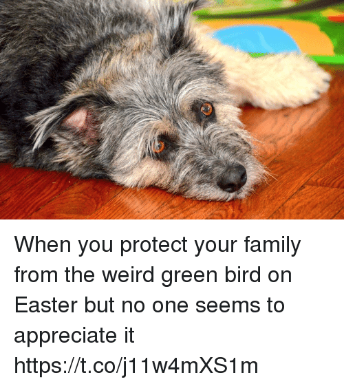 Easter, Family, and Memes: When you protect your family from the weird green bird on Easter but no one seems to appreciate it https://t.co/j11w4mXS1m
