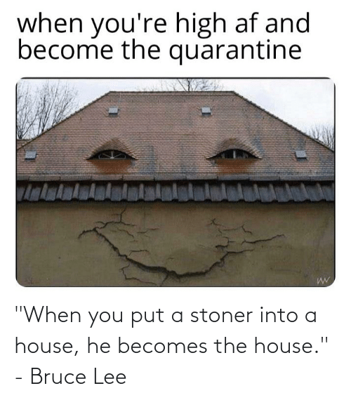 "stoner: ""When you put a stoner into a house, he becomes the house."" - Bruce Lee"