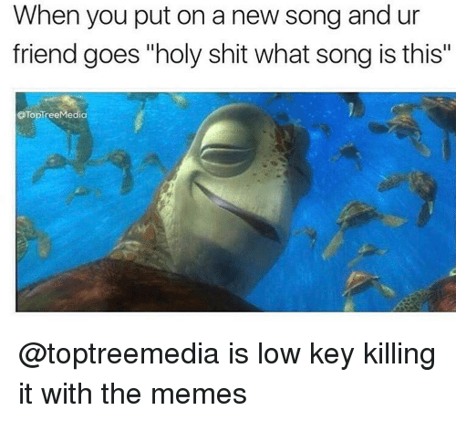 "goe: When you put on a new song and ur  friend goes ""holy shit what song is this""  OTopTree Media @toptreemedia is low key killing it with the memes"