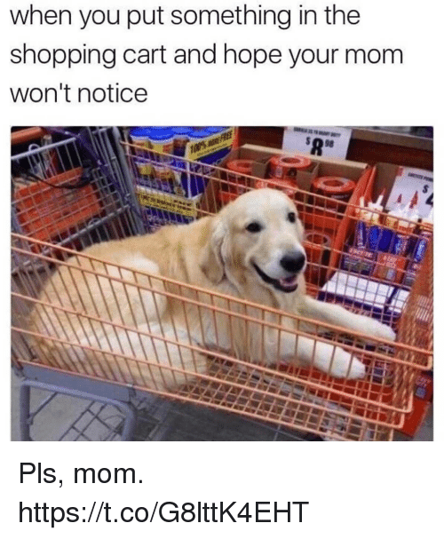 Funny, Shopping, and Hope: when you put something in the  shopping cart and hope your mom  won't notice Pls, mom. https://t.co/G8lttK4EHT