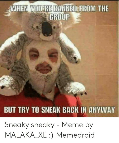 Sneaky Sneaky Meme: WHEN YOU RE BANNED FROM THE  GROUP  BUT TRY TO SNEAK BACK IN ANYWAY Sneaky sneaky - Meme by MALAKA_XL :) Memedroid