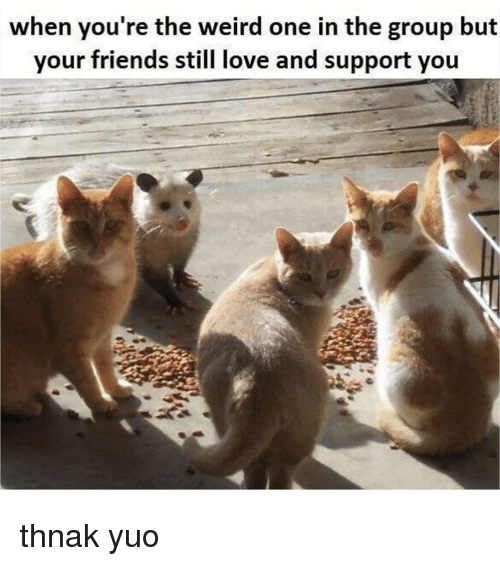 Friends, Love, and Memes: when you re the weird one in the group but  your friends still love and support you thnak yuo