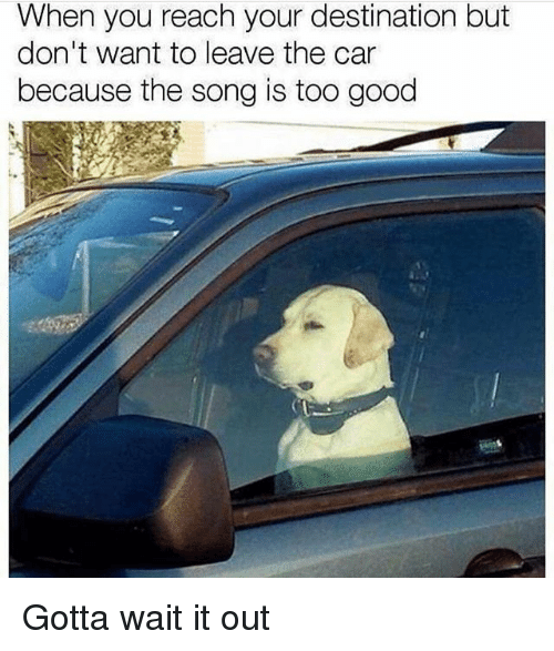 Memes, Good, and 🤖: When you reach your destination but  don't want to leave the car  because the song is too good Gotta wait it out
