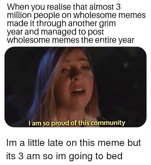 Wholesome Memes: When you realise that almost 3  million people on wholesome memes  made it through another grim  year and managed to post  wholesome memes the entire year  I am so proud of this community Im a little late on this meme but its 3 am so im going to bed