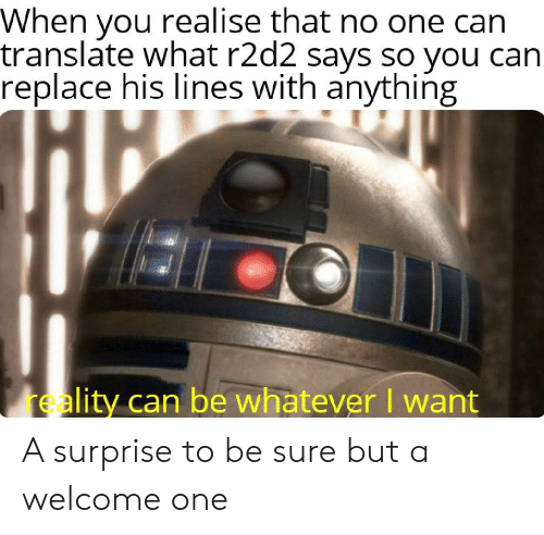 Translate: When you realise that no one can  translate what r2d2 says so you can  replace his lines with anything  reality can be whatever I want A surprise to be sure but a welcome one