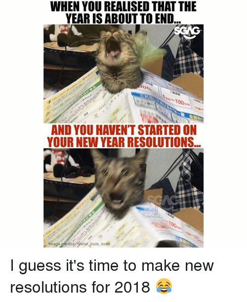Memes, New Year's, and Guess: WHEN YOU REALISED THAT THE  YEAR IS ABOUT TO END  AND YOU HAVEN'T STARTED ON  YOUR NEW YEAR RESOLUTIONS I guess it's time to make new resolutions for 2018 😂