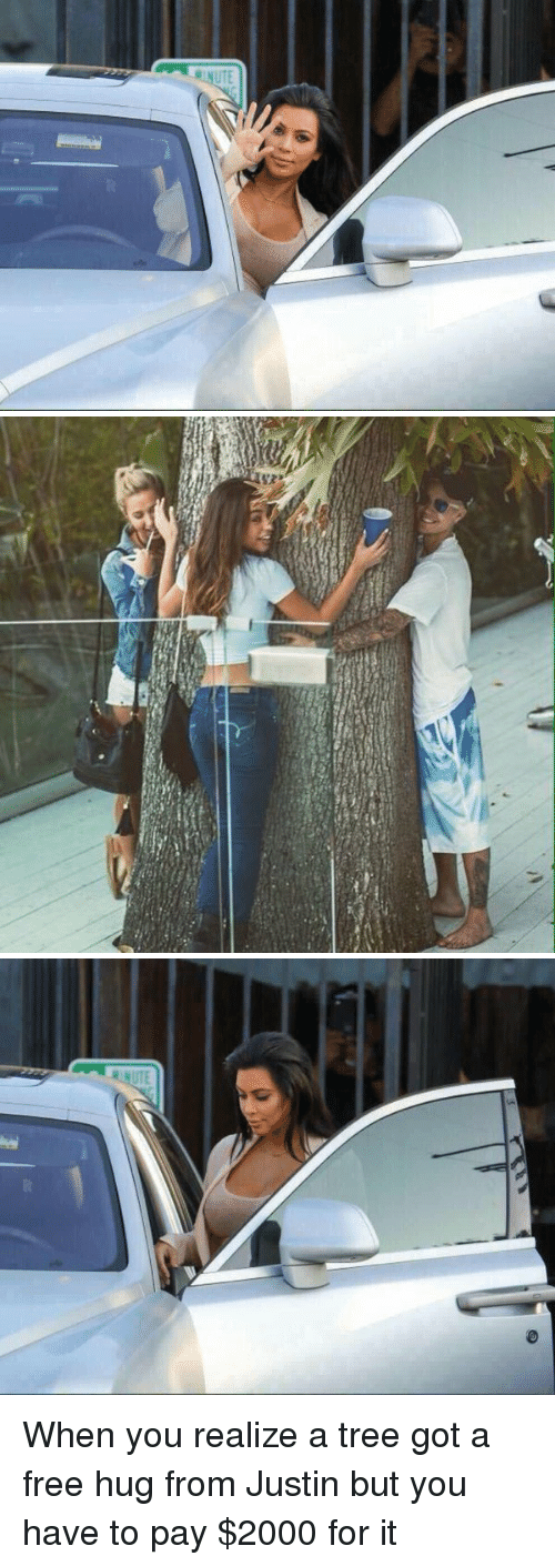free hug: When you realize a tree got a free hug from Justin but you have to pay $2000 for it