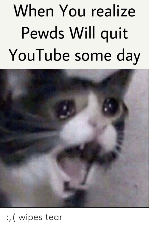 wipes tear: When You realize  Pewds Will quit  YouTube some day :,( wipes tear