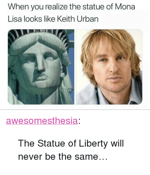 "Statue of Liberty: When you realize the statue of Mona  Lisa looks like Keith Urban <p><a href=""http://awesomesthesia.tumblr.com/post/173290027132/the-statue-of-liberty-will-never-be-the-same"" class=""tumblr_blog"">awesomesthesia</a>:</p>  <blockquote><p>The Statue of Liberty will never be the same…</p></blockquote>"