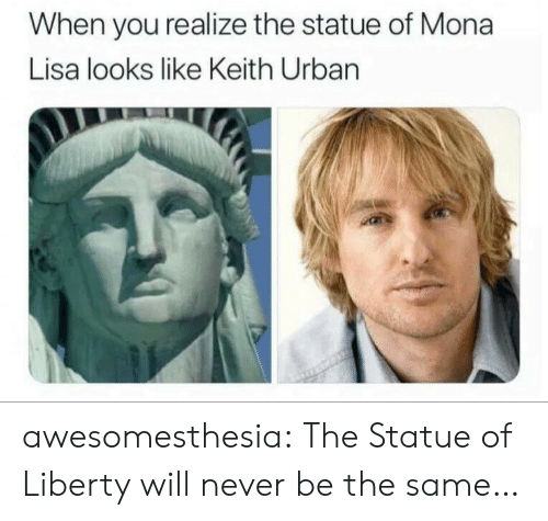 Statue of Liberty: When you realize the statue of Mona  Lisa looks like Keith Urban awesomesthesia:  The Statue of Liberty will never be the same…