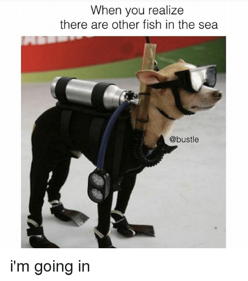 When you realize there are other fish in the sea i 39 m going for Fish in the sea meme
