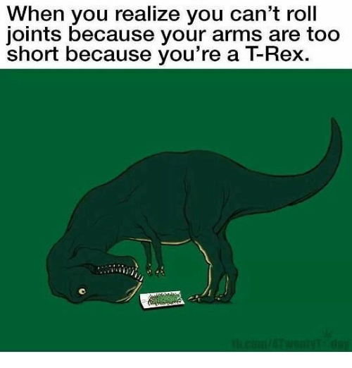 trex: When you realize you can't roll  joints because your arms are too  short because you're a TRex.