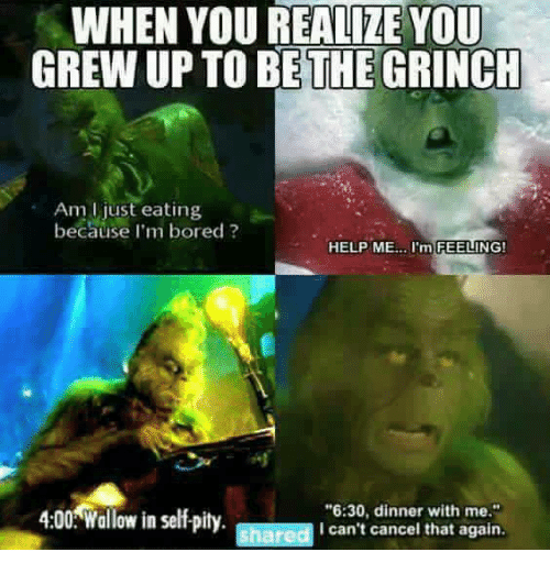The Grinch, and Memes: WHEN YOU REALIZE YOU GREW UP TO BE THE GRINCH ...