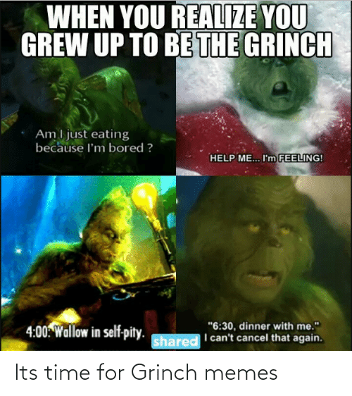 """wallow in self pity: WHEN YOU REALIZE YOU  GREW UP TO BE THE GRINCH  Am I just eating  because l'm bored ?  HELP ME... I'm FEELING!  """"6:30, dinner with me.""""  I can't cancel that again.  4:00: Wallow in self-pity.  shared Its time for Grinch memes"""