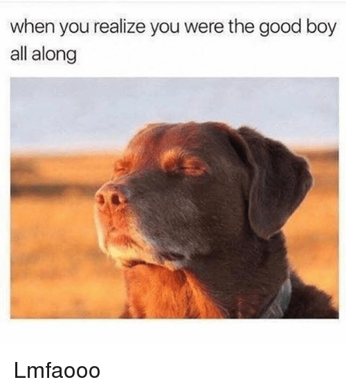 Memes, 🤖, and The-Good-Boy: when you realize you were the good boy  all along Lmfaooo