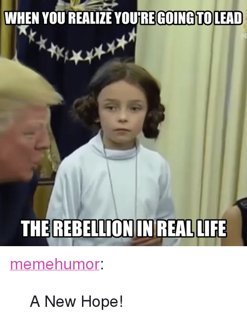 """A New Hope: WHEN YOU REALIZE YOURE GOING TOLEAD  THE REBELLION IN REAL LIFE <p><a href=""""http://memehumor.net/post/166909644302/a-new-hope"""" class=""""tumblr_blog"""">memehumor</a>:</p>  <blockquote><p>A New Hope!</p></blockquote>"""