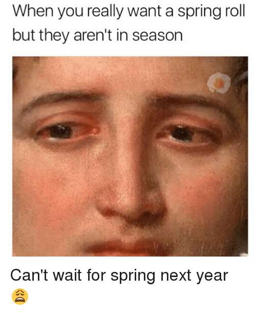 Memes, Spring, and 🤖: When you really want a spring roll  but they aren't in season Can't wait for spring next year 😩
