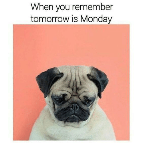 Tomorrow Is Monday: When you remember  tomorrow is Monday