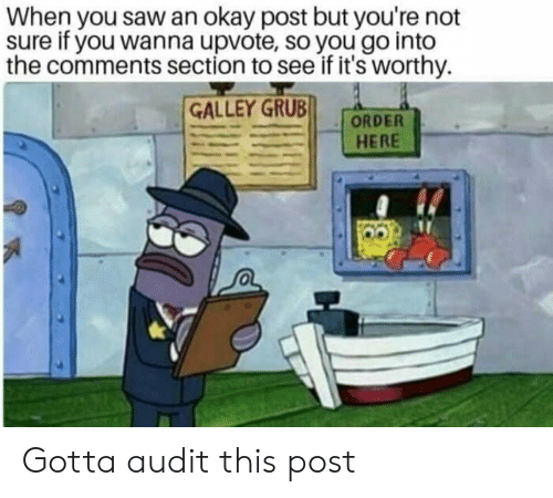 Comments Section: When you saw an okay post but you're not  sure if you wanna upvote, so you go into  the comments section to see if it's worthy.  GALLEY GRUB  HERE Gotta audit this post