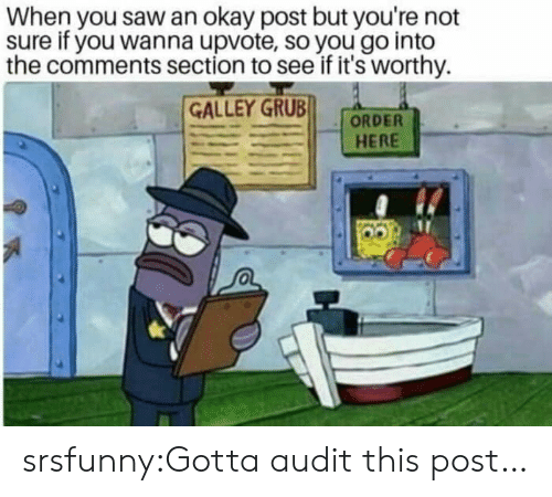 Comments Section: When you saw an okay post but you're not  sure if you wanna upvote, so you go into  the comments section to see if it's worthy.  GALLEY GRUB  HERE srsfunny:Gotta audit this post…