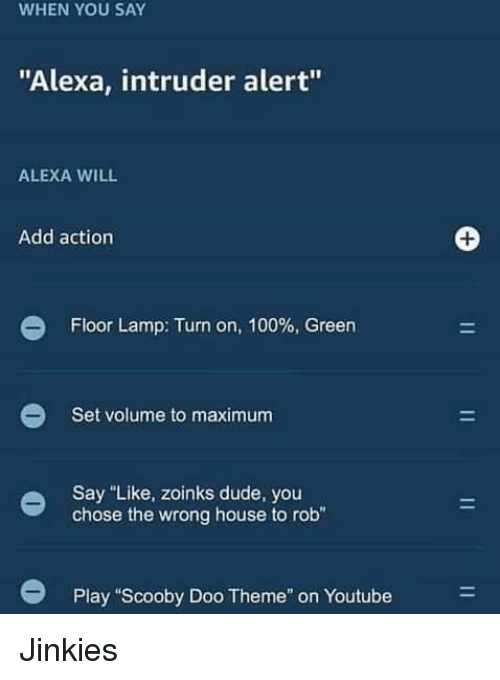 """Zoinks: WHEN YOU SAY  """"Alexa, intruder alert""""  ALEXA WILL  Add action  Floor Lamp: Turn on, 100% Green  Set volume to maximum  Say """"Like, zoinks dude, you  chose the wrong house to rob""""  Play """"Scooby Doo Theme"""" on Youtube Jinkies"""