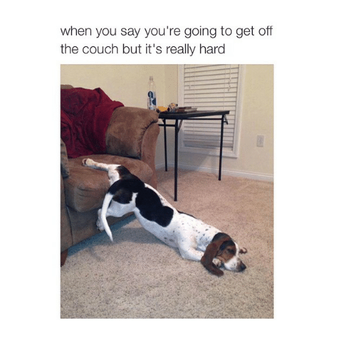 Girl Memes: when you say you're going to get off  the couch but it's really hard
