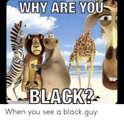 Black Guy: When you see a black guy