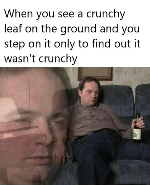 You Step: When you see a crunchy  leaf on the ground and you  step on it only to find out it  wasn't crunchy