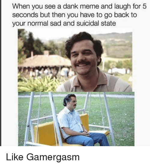 A Dank Meme: When you see a dank meme and laugh for 5  seconds but then you have to go back to  your normal sad and suicidal state Like Gamergasm