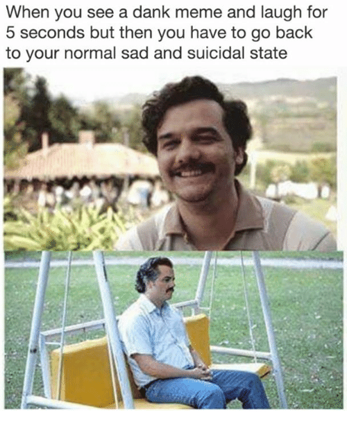 A Dank Meme: When you see a dank meme and laugh for  5 seconds but then you have to go back  to your normal sad and suicidal state