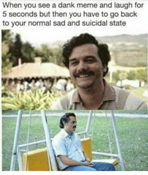 Danke Meme: When you see a dank meme and laugh for  5 seconds but then you have to go back  to your normal sad and suicidal state