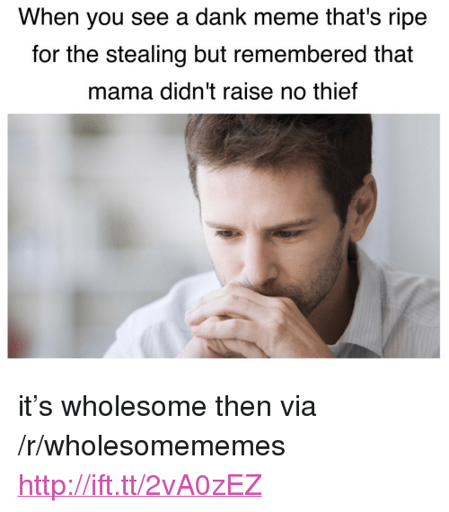 "A Dank Meme: When you see a dank meme that's ripe  for the stealing but remembered that  mama didn't raise no thief <p>it&rsquo;s wholesome then via /r/wholesomememes <a href=""http://ift.tt/2vA0zEZ"">http://ift.tt/2vA0zEZ</a></p>"